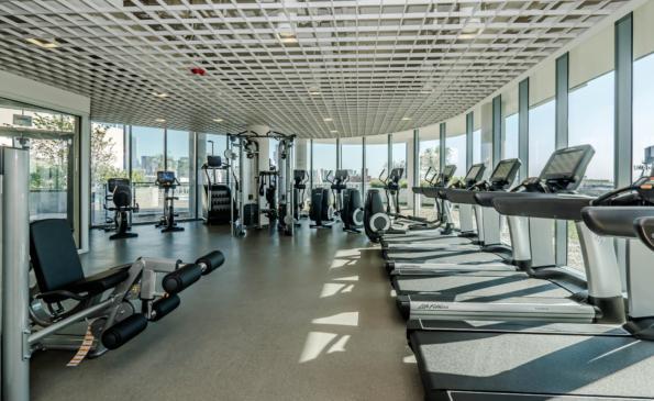 Fitness-240379