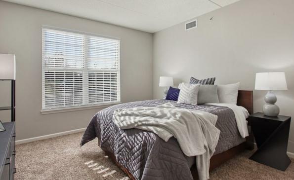 renew bed