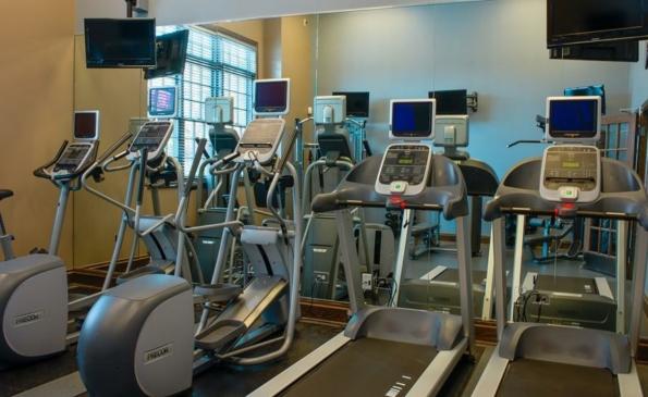 renew fitness