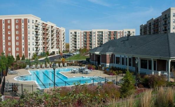 renew pool