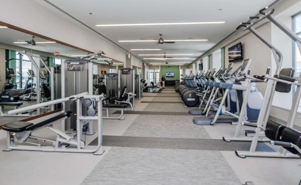 Fitness-370807