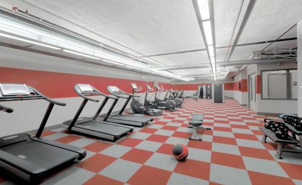 Fitness-490721